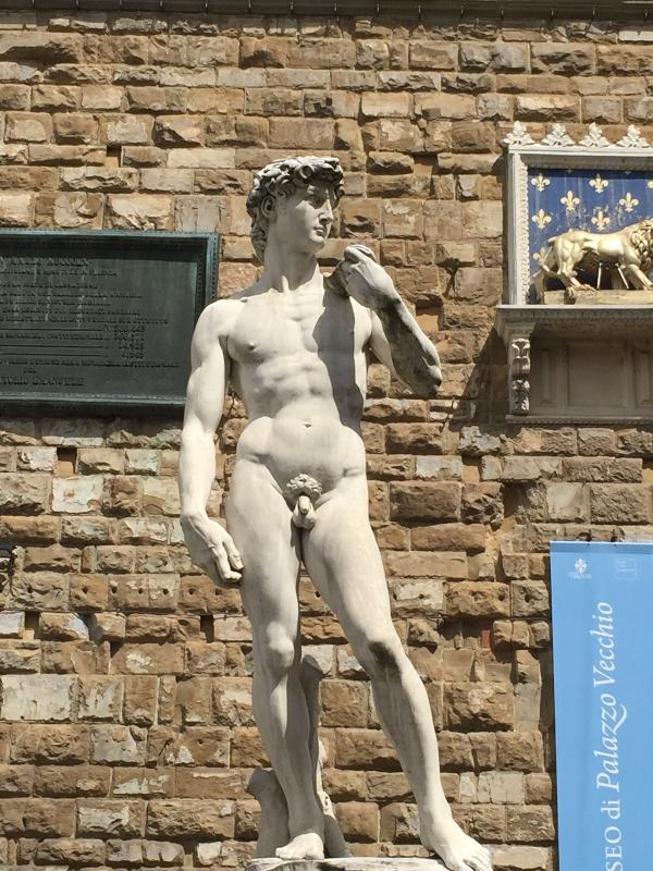 David Michelangelo Copia Piazza Signoria