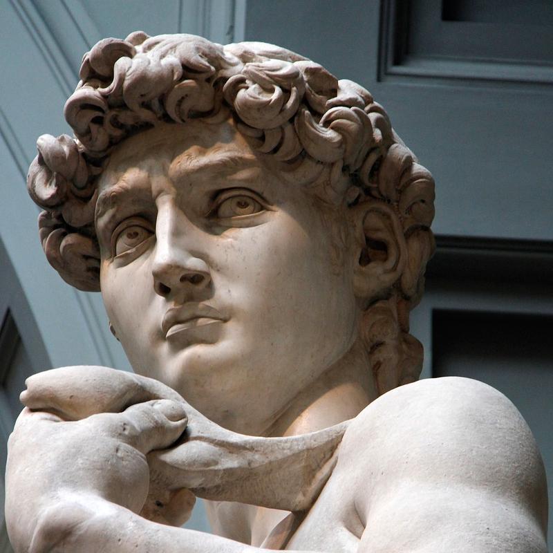 Cabeza del David de Michelangelo